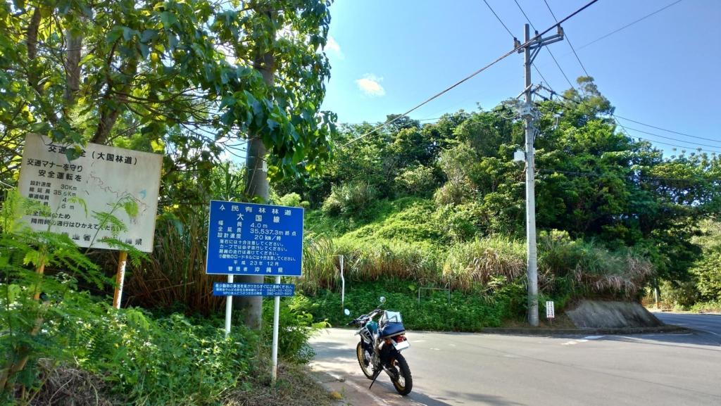 大国林道入り口